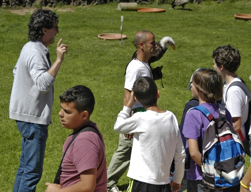Colegio Aula Aves Rapaces Lanzarote