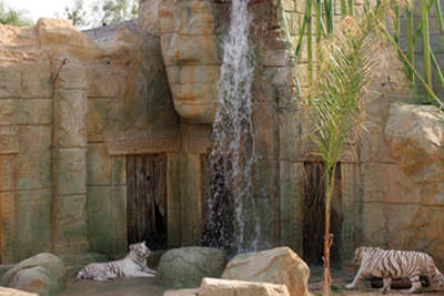 tigrerealblanco-ranchotexas-park-lanzarote.jpg